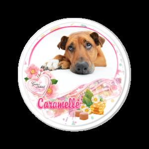 caramelle immagini cane